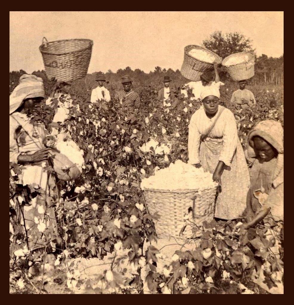 the slavery life of blacks in america For many slaves in the american south, the african american church was  and  enduring the hunger for education has been in american life.